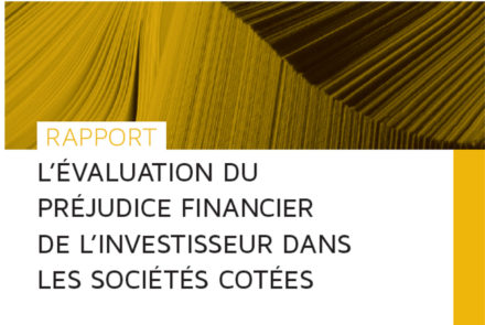 Rapport_preju_financier