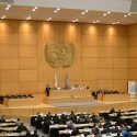 3 Questions à Meryem Deffairi Sur Les Négociations Relatives Au Devoir De Vigilance Devant L'ONU